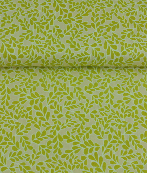 boxwood chartreuse organic